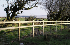 Stock proof fencing for all types of livestock